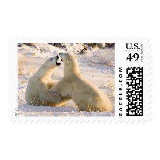 Canada, Manitoba, Hudson Bay, Churchill. 3 Postage