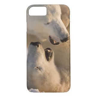 Canada, Manitoba, Hudson Bay, Churchill. 4 iPhone 7 Case