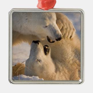 Canada, Manitoba, Hudson Bay, Churchill. 4 Metal Ornament