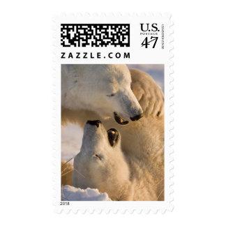 Canada, Manitoba, Hudson Bay, Churchill. 4 Stamp