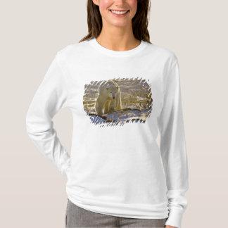 Canada, Manitoba, Hudson Bay, Churchill. 9 T-Shirt