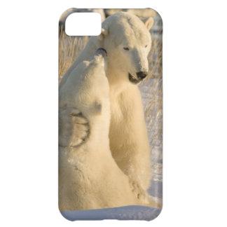 Canada, Manitoba, Hudson Bay, Churchill. iPhone 5C Covers