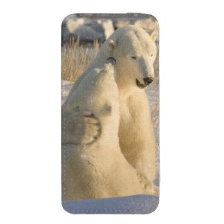 Canada, Manitoba, Hudson Bay, Churchill. iPhone 5 Pouch