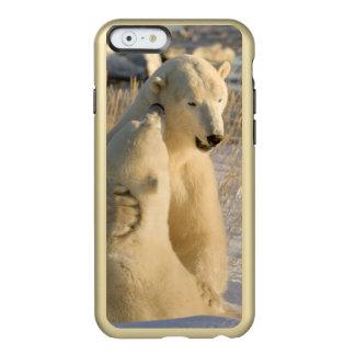 Canada, Manitoba, Hudson Bay, Churchill. Incipio Feather® Shine iPhone 6 Case