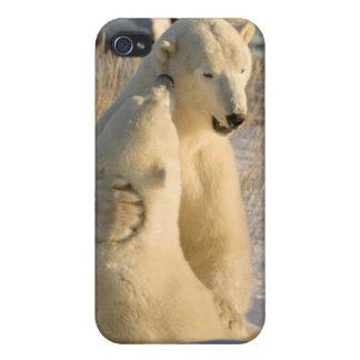 Canada, Manitoba, Hudson Bay, Churchill. iPhone 4/4S Cover