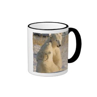 Canada, Manitoba, Hudson Bay, Churchill. Coffee Mug