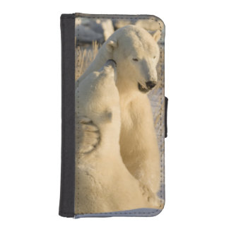 Canada, Manitoba, Hudson Bay, Churchill. iPhone 5 Wallet Case