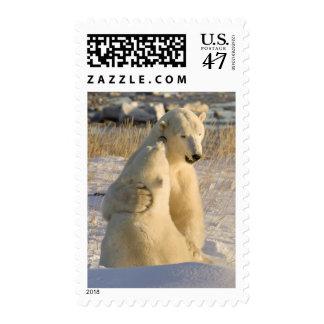 Canada, Manitoba, Hudson Bay, Churchill. Postage