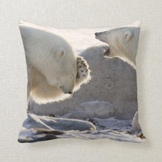 Canada, Manitoba, Hudson Bay, Churchill Throw Pillow