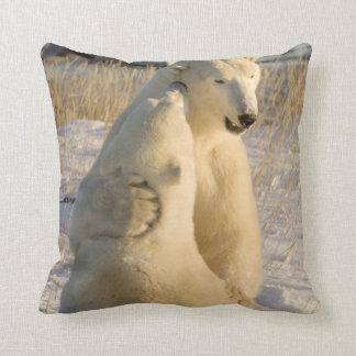 Canada, Manitoba, Hudson Bay, Churchill. Throw Pillow