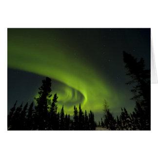 Canada, Manitoba. View of aurora borealis and Card