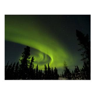 Canada, Manitoba. View of aurora borealis and Postcard