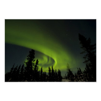 Canada, Manitoba. View of aurora borealis and Poster