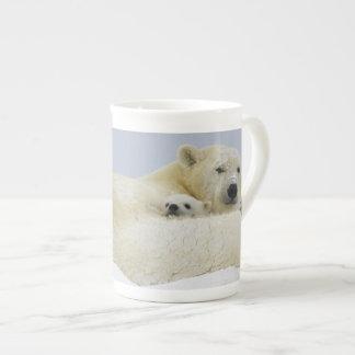 Canada, Manitoba, Wapusk National Park. Polar 8 Bone China Mug