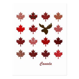Canada Maple Leaf and Moose postcard