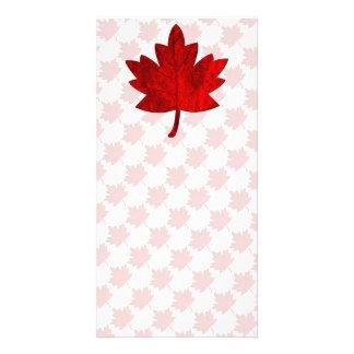 Canada-Maple Leaf by Shirley Taylor Card