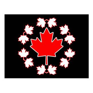 Canada Maple Leaf Circle Design Postcard