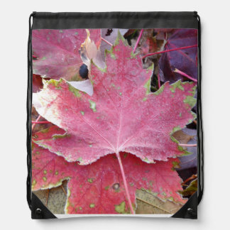 Canada Maple Leaf Collection Backpack