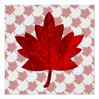 Canada-Maple Leaf Poster