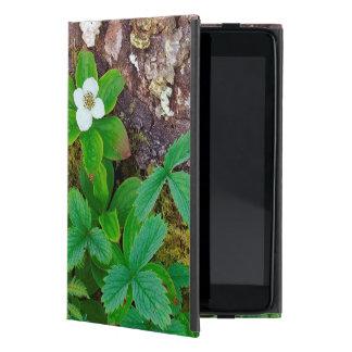 Canada, New Brunswick, ,  2 iPad Mini Cover