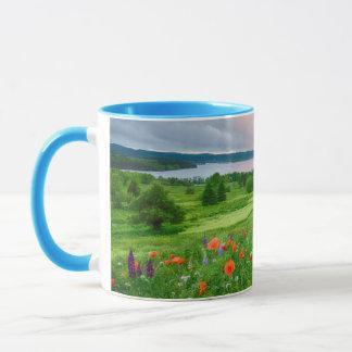 Canada, New Brunswick, ,  3 Mug