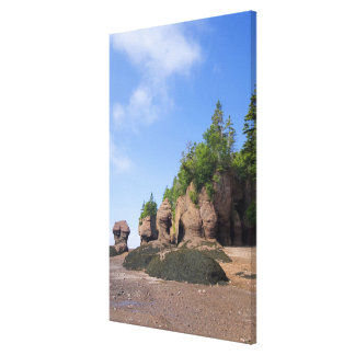 Canada, New Brunswick, Hopewell Cape, Bay of Stretched Canvas Print