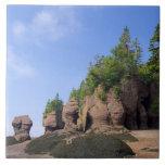 Canada, New Brunswick, Hopewell Cape, Bay of Ceramic Tile