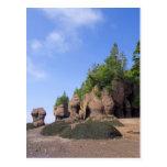 Canada, New Brunswick, Hopewell Cape, Bay of Postcard