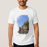 Canada, New Brunswick, Hopewell Cape, Bay of T-shirt