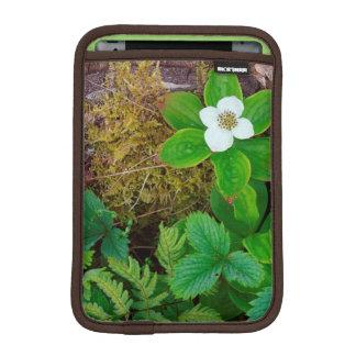 Canada, New Brunswick, Kingston, Shampers Bluff 2 iPad Mini Sleeve