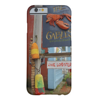 Canada, New Brunswick, St Andrews. Colorful Barely There iPhone 6 Case