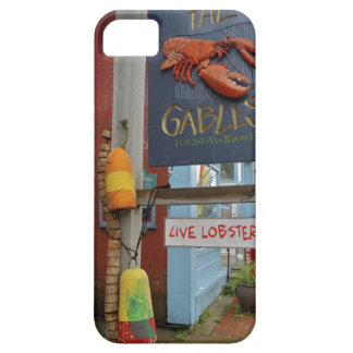 Canada, New Brunswick, St Andrews. Colorful iPhone SE/5/5s Case