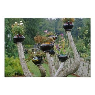 Canada, New Brunswick, St Andrews. Teapots Photo Print