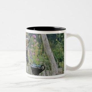 Canada, New Brunswick, St Andrews. Teapots Two-Tone Coffee Mug