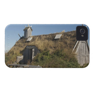 Canada, Newfoundland and Labrador, L'Anse Aux iPhone 4 Case