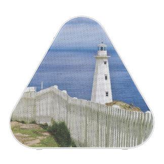 Canada, Newfoundland, Cape Spear National 2 Speaker