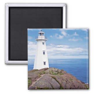 Canada, Newfoundland, Cape Spear National 2 Inch Square Magnet