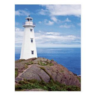 Canada, Newfoundland, Cape Spear National Postcard