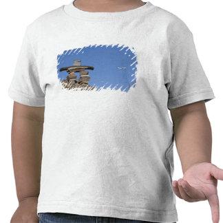 Canada, Newfoundland, St. John's. Inukshuk (to T-shirt