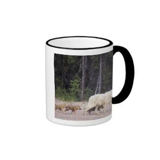 Canada, Northwest Territories, Great Slave Lake. Coffee Mugs