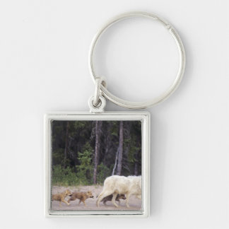 Canada, Northwest Territories, Great Slave Lake. Silver-Colored Square Keychain