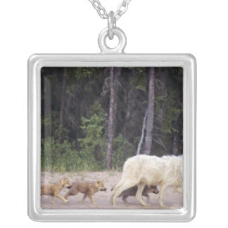 Canada, Northwest Territories, Great Slave Lake. Square Pendant Necklace