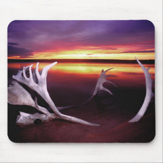 Canada, Northwest Territories, Whitefish Lake. Mouse Pad