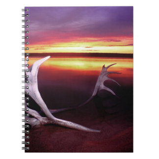 Canada, Northwest Territories, Whitefish Lake. Notebook