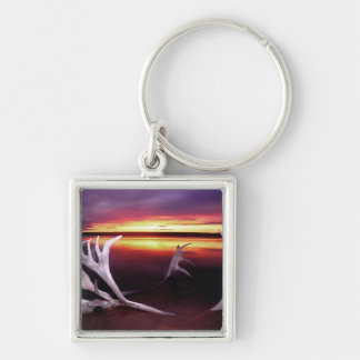 Canada, Northwest Territories, Whitefish Lake. Silver-Colored Square Keychain