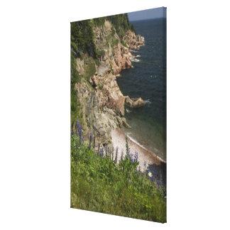 Canada, Nova Scotia, Cape Breton Island, Cabot 3 Stretched Canvas Print