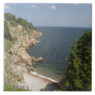 Canada, Nova Scotia, Cape Breton Island, Cabot Large Square Tile