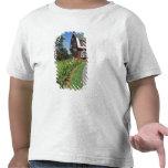 Canadá, Nuevo Brunswick, isla de Campobello. 2 Camisetas
