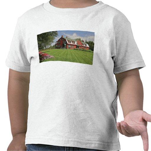 Canadá, Nuevo Brunswick, isla de Campobello Camiseta