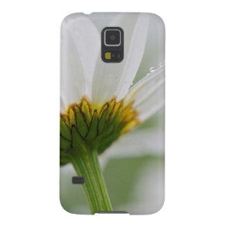 Canadá, Nuevo Brunswick, pen¢asco de Shampers Carcasas De Galaxy S5